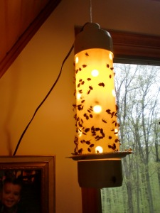 Strube's Stinkbugs Tower of Death Stinkbug Trap