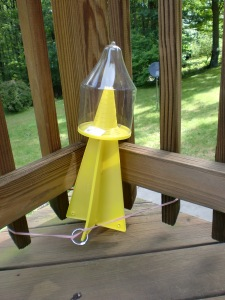 Dead Inn Stinkbug Trap Deployed on Deck